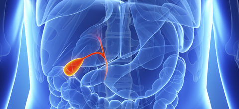 Gall-Bladder-Treatment-in-Mumbai